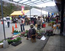 <center>花苗販売<br>Flower seedling sale</center>