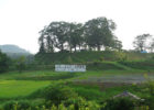 <center>浮牛城<br>(Fugyu castle)</center>